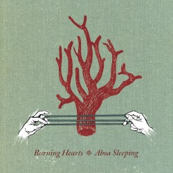 Burning Hearts - I Lost My Colour Vision