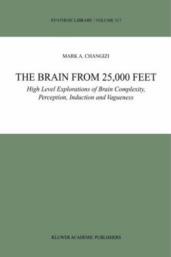The Brain from 25,000 Feet by M.A. Changizi